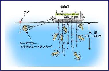 沿岸いかつり漁業