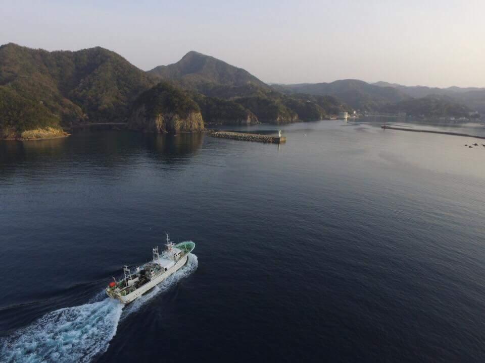 ホタルイカ漁を終え、柴山港入港間近の光春丸